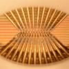 FUTUROS ARTIFICIALES: IBM da un paso hacia la Inteligencia Computarizada Orgánica