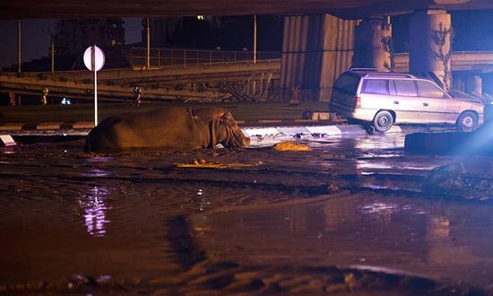 1-Flooding-Tbilisi-2015