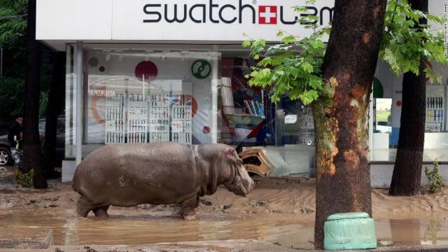 150614104029-tbilisi-floods-3-super-169