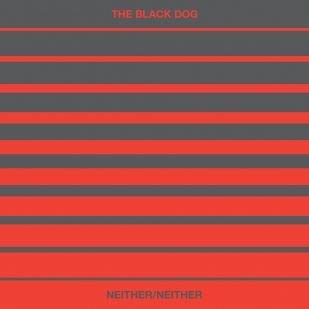 The Black Dog presenta su proximo album Neither/Neither