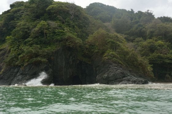 Santuario de Fauna en Acandí, Chocó: Colombia cuenta con un nuevo parque nacional