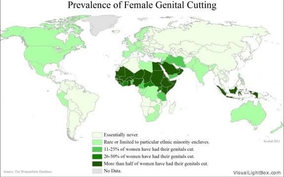 FGM: El Secretario General de las Naciones Unidas lanza Campaña anti mutilación genital en Mujeres