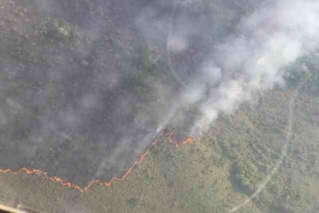 Las Guerrillas incendian Parque Natural La Macarena cerca a Caño Cristales
