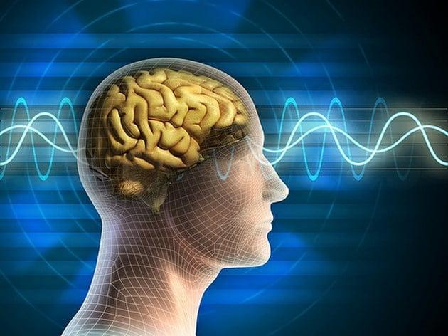 Nuestro cerebro olvida para ahorrar energía