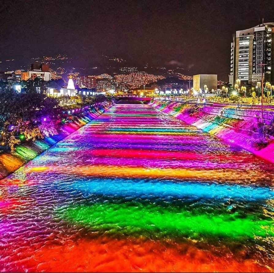Medellín florece este Diciembre con su tradicional Alumbrados Navideños