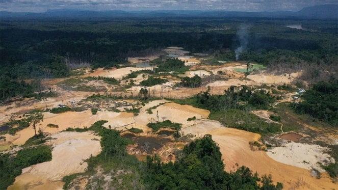 ¡Debemos actuar ya!: El Amazonas podría estar completamente destruido para 2064