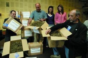 Bélgica: El primer Club Social de Cannabis de Bélgica presenta en su sede su primera cosecha de cannabis
