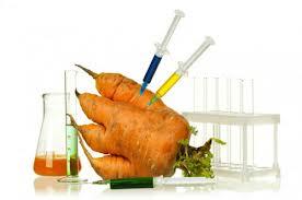 Perú se convirtió en el primer país en Sur América que prohíbe alimentos genéticamente modificados