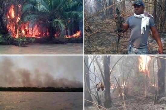 Incendio Unguia P 549x366 1395331960