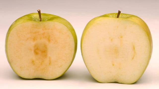 Cuidado? USA aprueba Manzanas genéticas que no se oxidan !