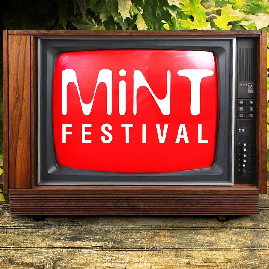 Mint Festival 2013