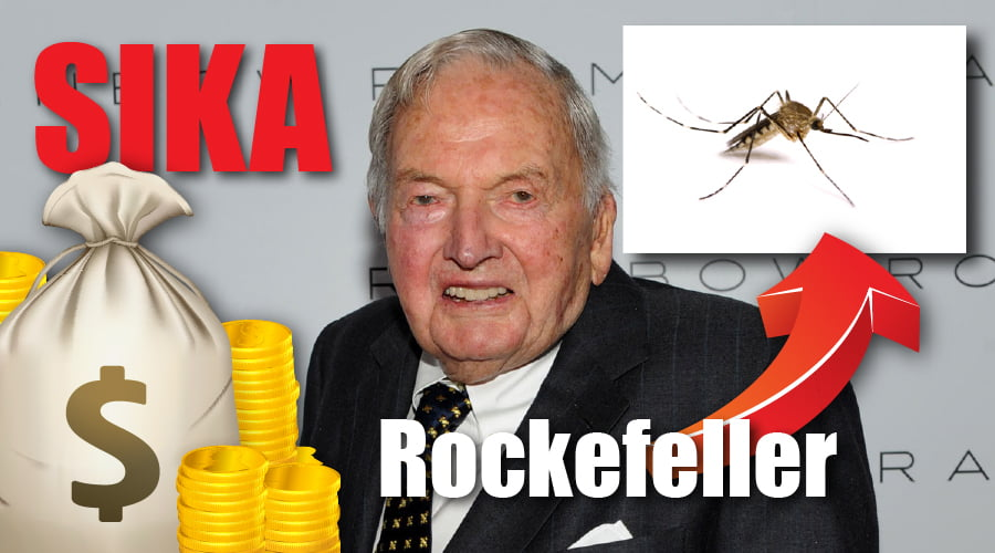 Sika_Rockefeller_9aacb0ea56a868e8993fa5bd4151fa8e