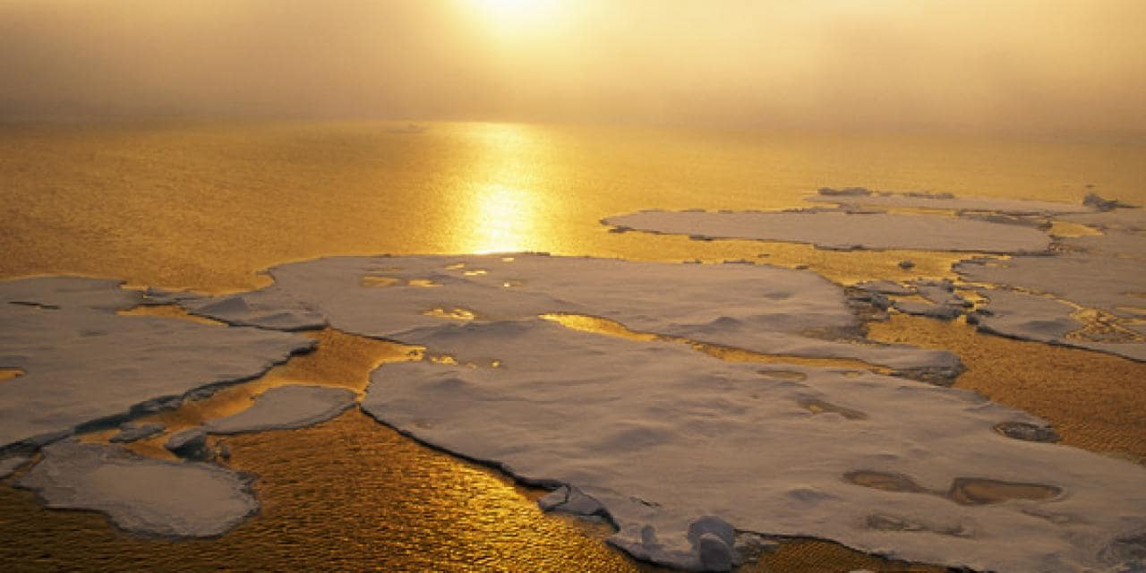 Los cuatro últimos años han sido los más cálidos de la Tierra jamás registrados.