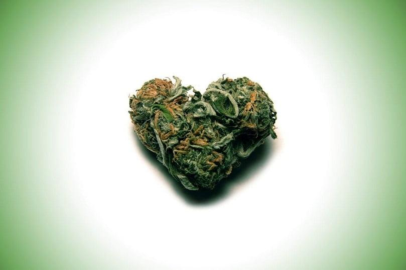 Adultos jóvenes con mayor riesgo de infarto por consumo de Cannabis