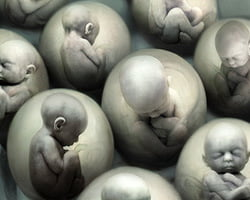 cloning2