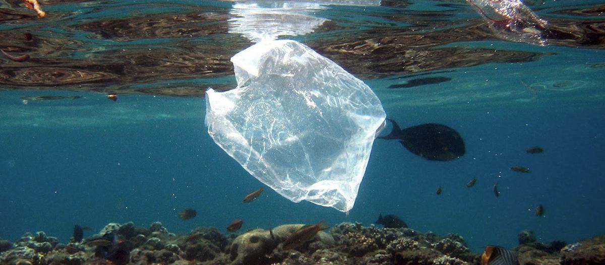 Chile también prohíbe las bolsas de plástico