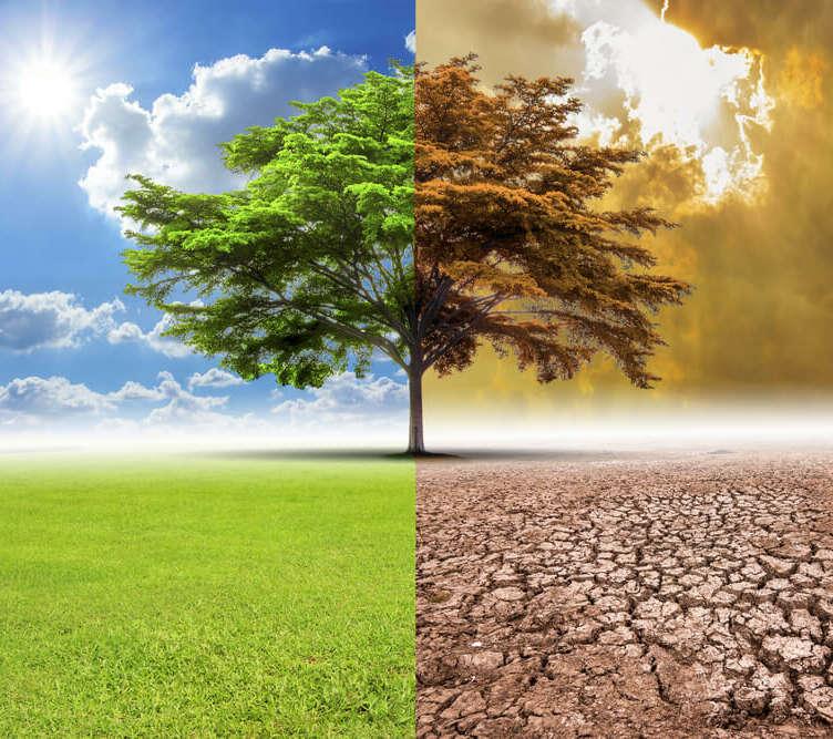 iklim degisikligi
