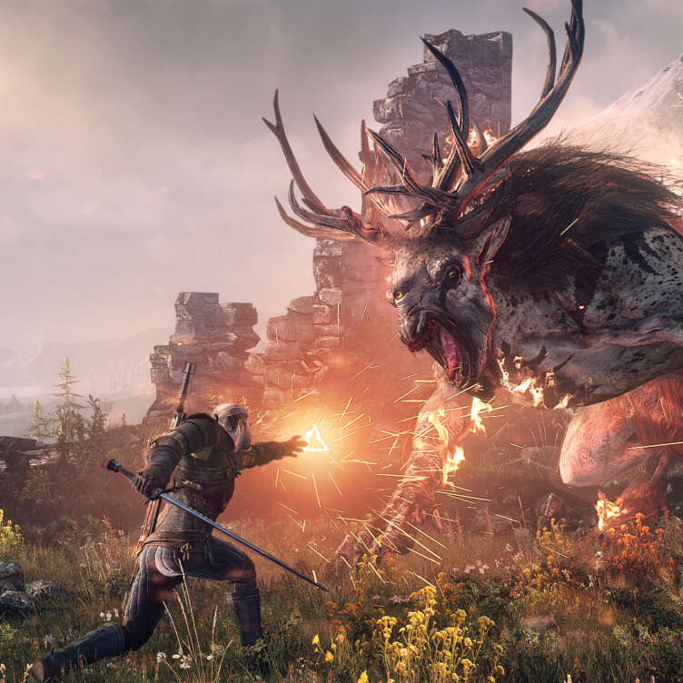 image the witcher 3 wild hunt 22370 2651 0001