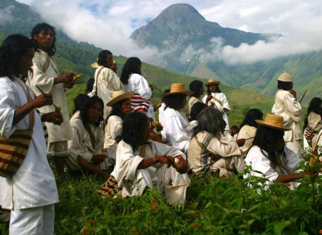 ¿Sabías que los indígenas son los mejores guardabosques en América Latina?