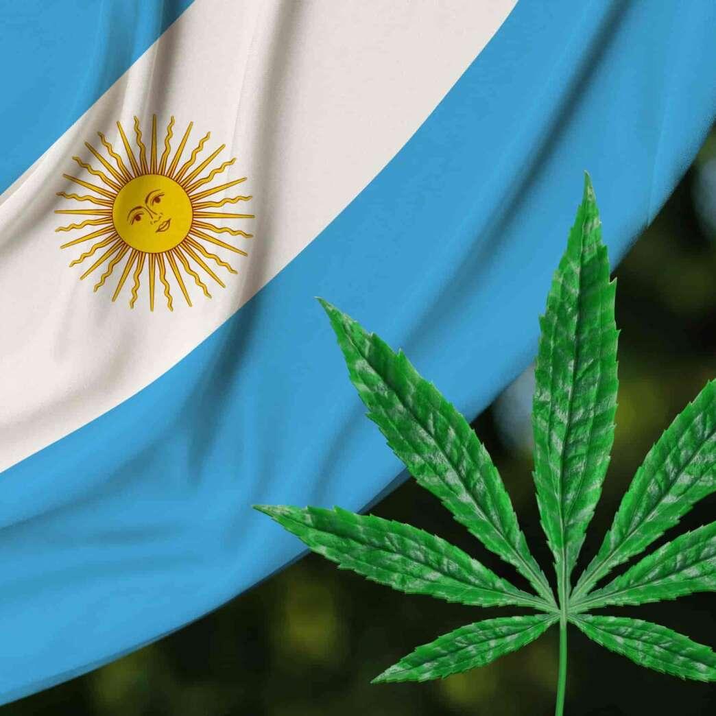 Argentina legaliza autocultivos de cannabis para uso medicinal