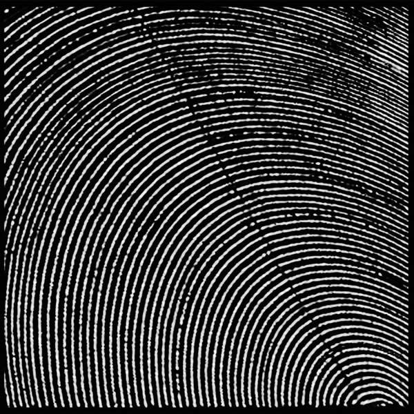 Metasplice - Infratracts, álbum debut del dúo; firmado por Morphine Records