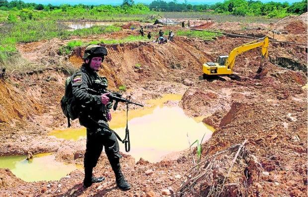 10 especies amenazadas por la minería ilegal en Colombia