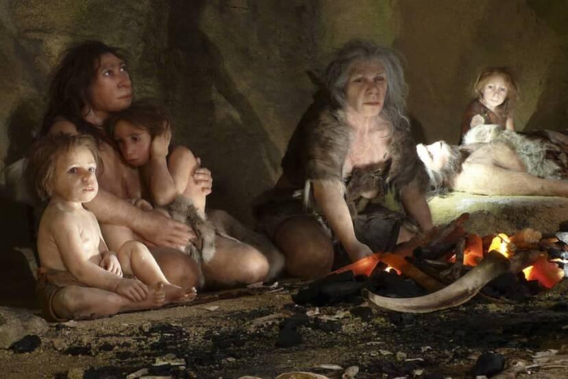 Los Neandertales NO comían solo carne como se cree