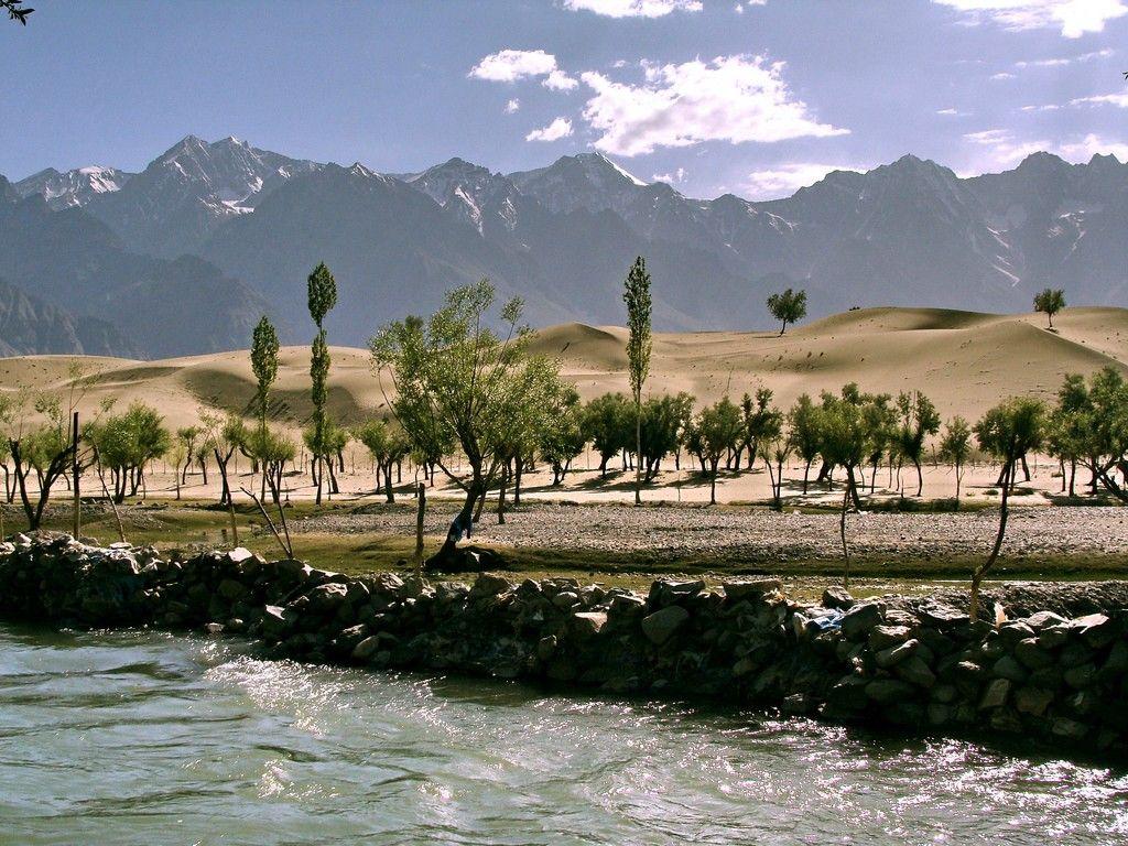 En Pakistán siembran más de 1.000 millones de árboles para mejorar su habitad