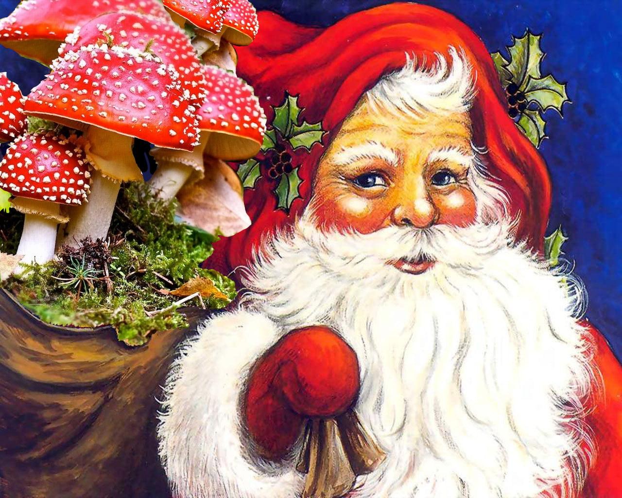 Es en realidad Papá Noel una Amanita Muscaria ? ( Hongo Alucinógeno? )