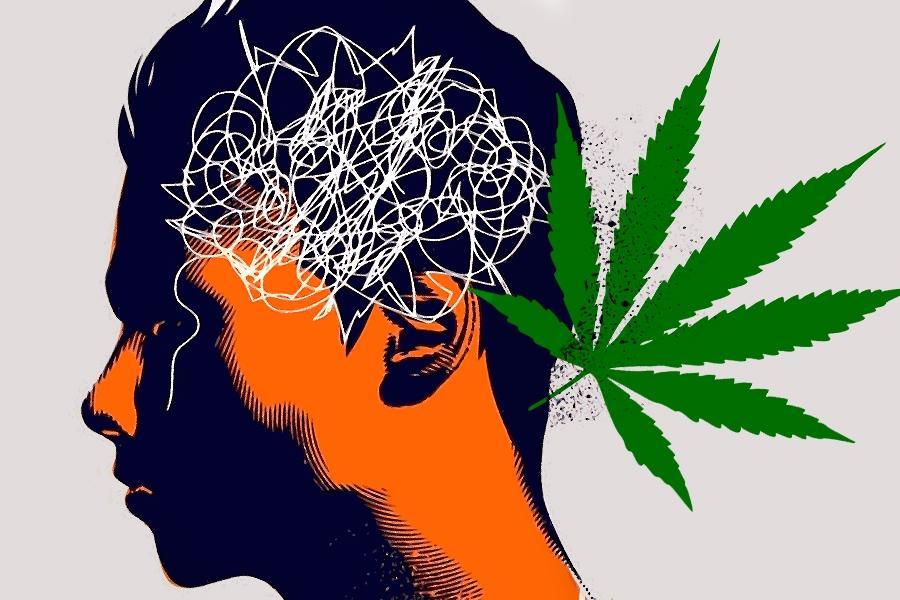 Cannabis y psicosis están relacionados debido a la predisposición genética de la esquizofrenia