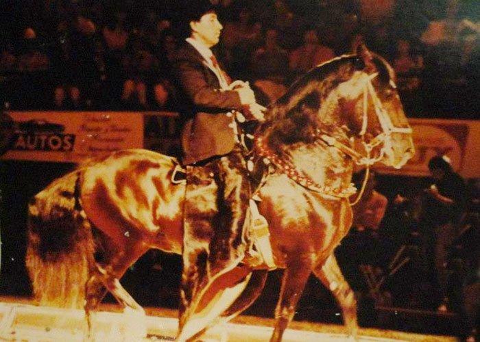 Así vivía Tupac Amarú, el caballo de Gacha