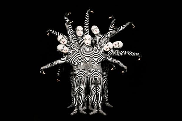zebras-circus